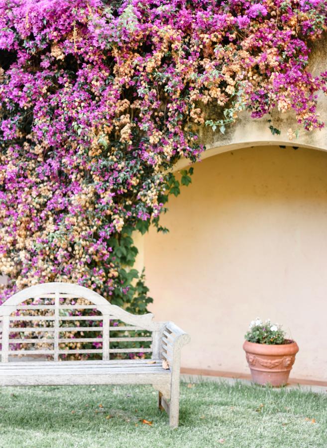 jardin fleurs domaine de vignale